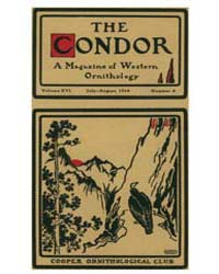 The Condor : 1914 ; Jul.-aug. No. 4 Vol.... Volume Vol. 16 by Patten, Michael