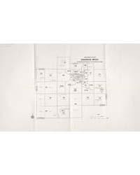 1980 Census Tracts Saginaw, Mich. Standa... by Michigan State University