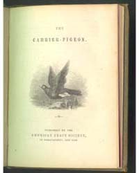 The Carrier-pigeon, Document Carrierpige... by Michigan State University