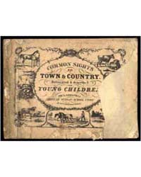 Town & Country. Delineated & Described f... by Michigan State University