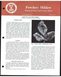 Powdery Mildew Disease of House and Gard... by Sandra Perry