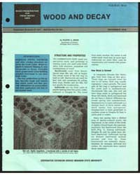 Wood and Decay, Document E1247 by Eldon A. Behr