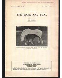 The Mare and Foal, Document E128Rev1 by R. S. Hudson