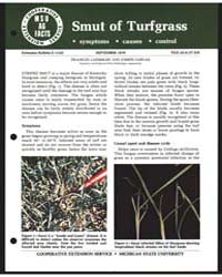 Smut of Tugfgrass, Document E1329 by Michigan State University