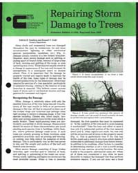 Repairing Storm Damage to Trees, Documen... by Koelling, Melvin R.