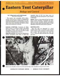 Eastem Tent Caterpillar Biology and Cont... by Ravlin, F. William