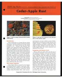 Cedar-apple Rust, Document E1441-80 by Randy Kelley