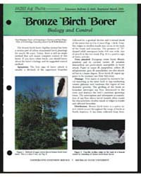 Bronze Birch Borer Biology and Control, ... by Kennedy, Keith