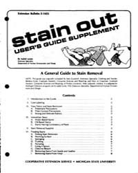 Stain Out User's Guide Supplement, Docum... by Isabel Lones