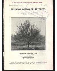 Pruning Young Fruit Trees, Document E148 by Marshall, Roy E.