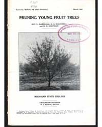 Pruning Young Fruit Trees, Document E148... by Marshall, Roy E.