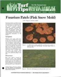 Fusarium Patch Pink Snow Mold, Document ... by J . M. Vargas