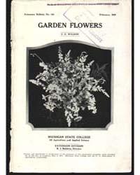 Garden Flowers, Document E155 by Wildon, C., E.