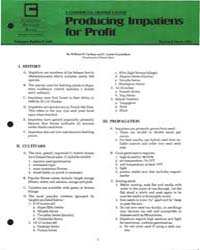 Producing Impariens for Profit, Document... by William H. Carlson