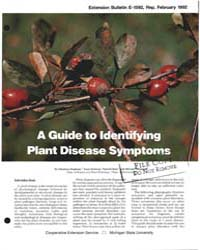 A Guide to Identifying Plant Disease Sym... by Christine Stephens