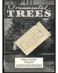 Ornamental Trees, Document E160 by Barr, Charles W.