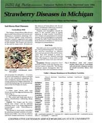 Strawberry Diseases in Michigan, Documen... by Sandra Perry