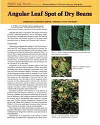 Angular Leaf Spot of Dry Beans, Document... by L. P. Hart