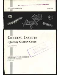 Chewing Insects, Document E180 by Hutson, Ray