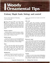 Cottony Maple Scale : Biology and Contro... by Gary A. Dunn