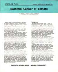 Bacterial Canker of Tomato, Document E19... by Christine T. Stephens