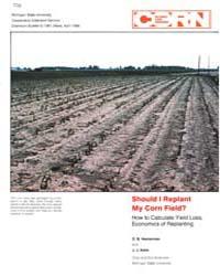 Should I Replant, Document E1961-1986 by O. B. Hesterman