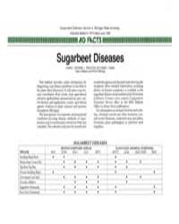 Sugarbeet Diseases, Document E1973-1986 by Charles L. Schneider