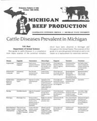 Michigan Beef Production, Document E1990... by S. R. Rust