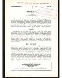 Bedbugs, Document E211 by McDaniel, E. I.