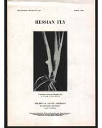 Hessian Fly, Document E225 by Michigan State University