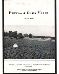 Proso - a Grain Millet, Document E231Pri... by C. R. Merge