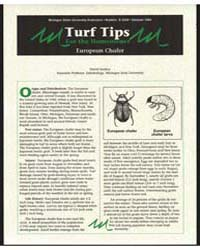 Turf Tips for the Homeowner European Cha... by David Smitley