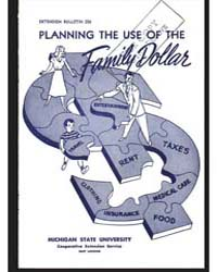 Planning the Use of the Family Dollar, D... by Michigan State University