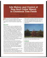 Life History and Control of Pine Root Co... by Eiteen A. Eliason
