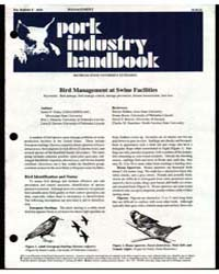 Pork Industry Handbook, Document E2618 by James F. Glahn
