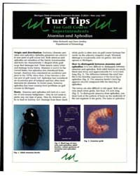 Turt Tips for Golf Course Superintendent... by Michigan State University