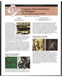 Common Oak Defoliators in Michiganit's N... by Tom Ellis