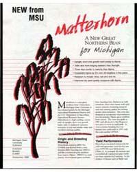 New Form Msu Matterhorn a New Northern B... by Michigan State University