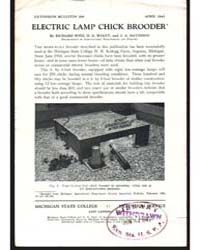 Electric Lamp Chick Brooder, Document E2... by Richard Witz