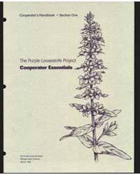 The Purple Loosestrife Project Cooperato... by Michigan State University