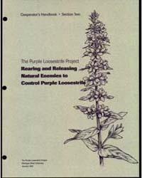 The Purple Loosestrife Project Rearing a... by Michigan State University