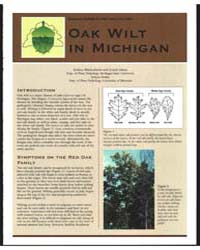 Oak Wilt in Michigan, Document E2764 by Zachary Blankenheim