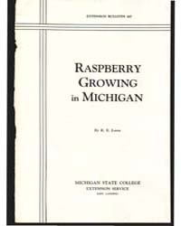 Raspberry Growing in Michigan, Document ... by R. E. Loree