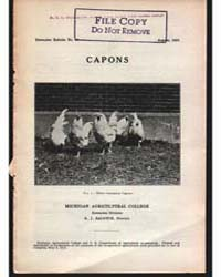 Capons, Document E31 by Baldwin, R. J.