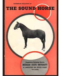 The Sound Horse, Document E330 by H. F. Moxley