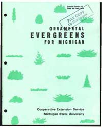 Ornamental Evergreens, Document E426 by Joseph T. Cox