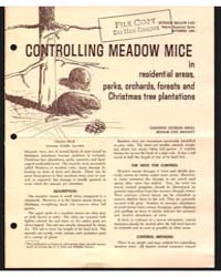 Controlling Meadow Mice In, Document E43... by Charles Shick