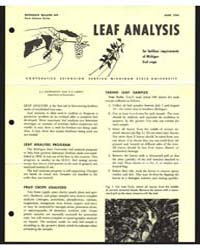 Leaf Analysis, Document E449 by Kenworthy, A. L.