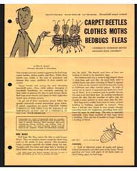 Carpet Beetles Clothes Moths Bedbugs Fle... by Ray L. Janes