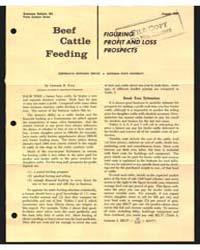 Beef Cattle Feeding, Document E463 by Leonard R. Kyle